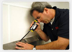mold inspection phoenix